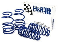 50487-77 H-R Super Sport Springs, BMW E82, E88 1-series